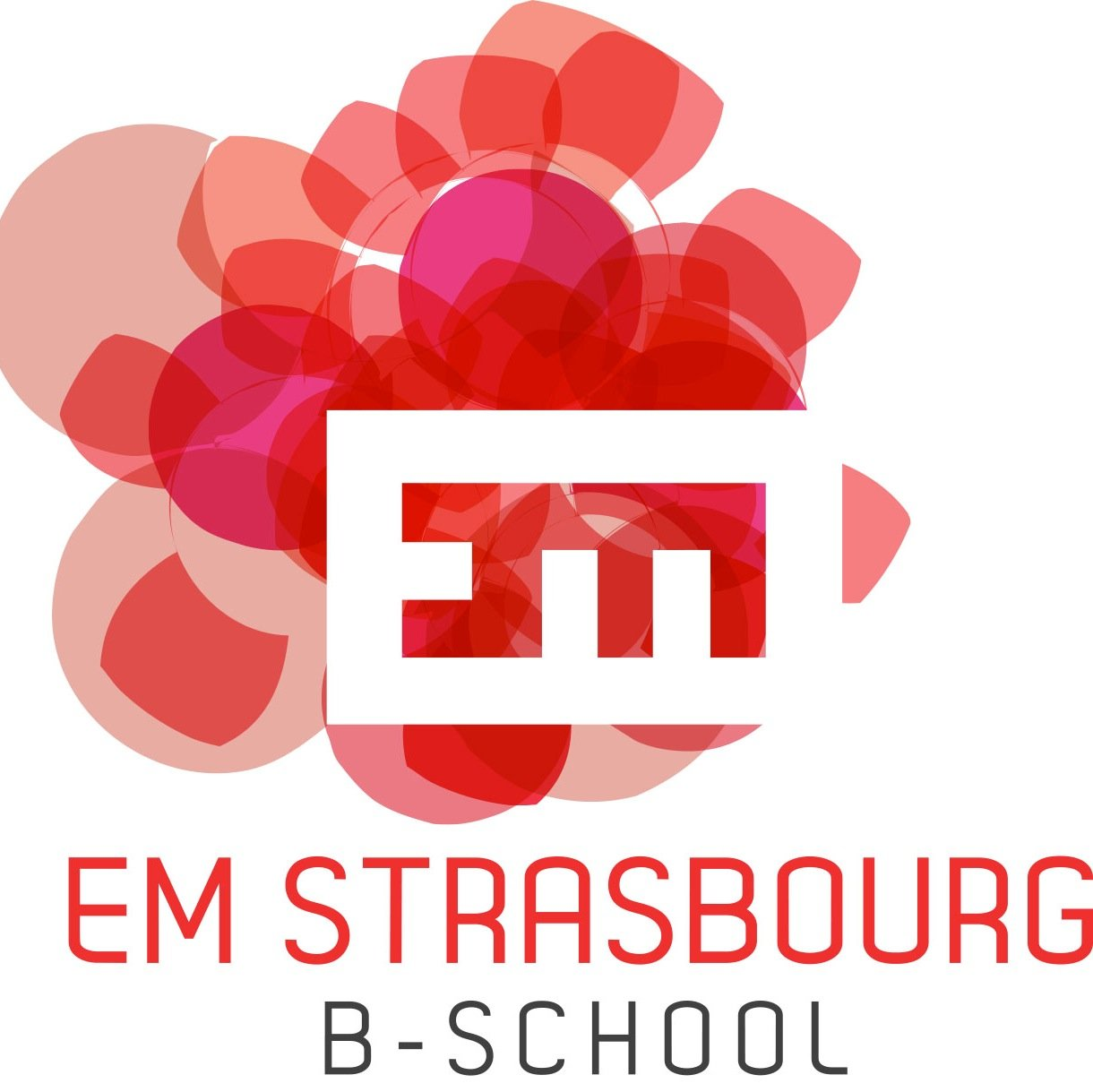 Executive MBA Marketing et management de la pharmacie d'officine